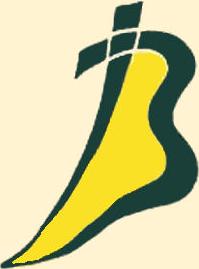 moda di cltza logo